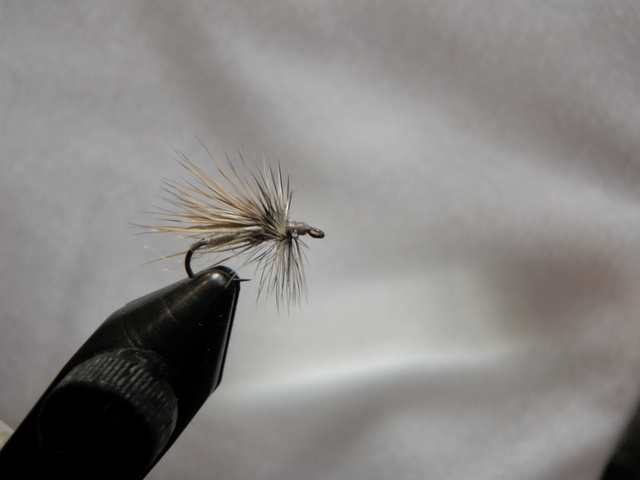 Light Gray Deer Hair Caddis