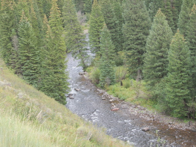 North Fork Stretch Fished on Thursday Viewed from High Bank Next to Road