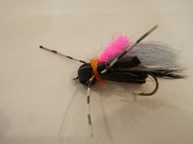 Black Foam Fly That Matia Modified
