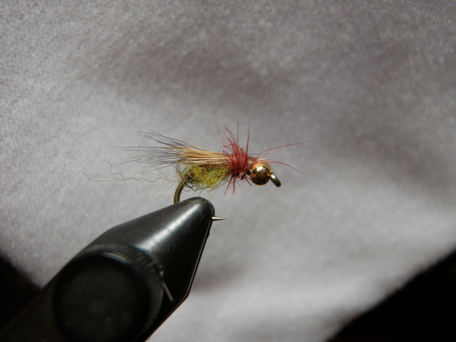 Bright Green Caddis Pupa