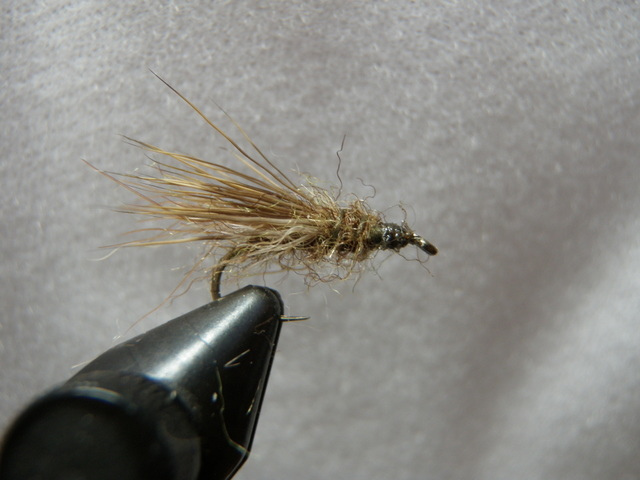 Olive Brown Muggly Caddis