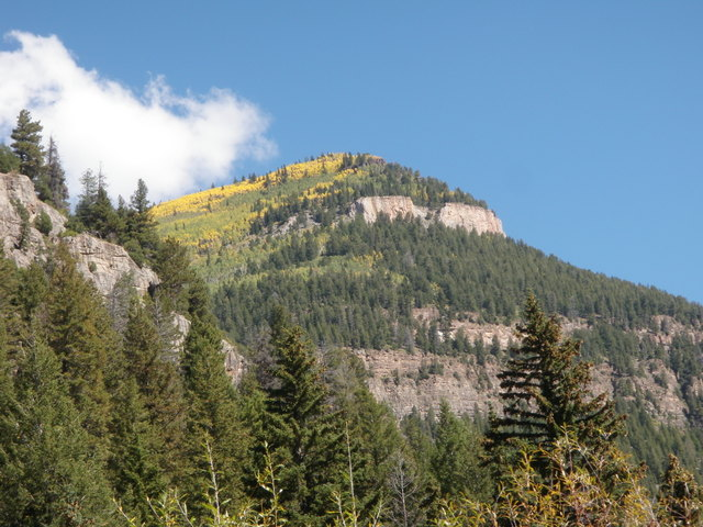 Aspens Change Colors on the Hillsides